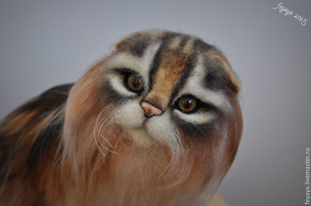 Купить Кот хайленд фолд - разноцветный, кот, котик, кошка, коты, котята, коты и кошки