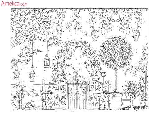 Раскраска антистресс сад | Раскраски, Книжка-раскраска ...