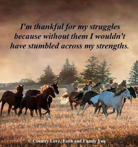 Thankful for my struggles!