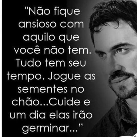 Pe Fábio De Melo Frases Frase