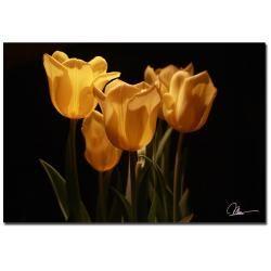 Martha Guerra 'Yellow Blooms VI' Canvas Art