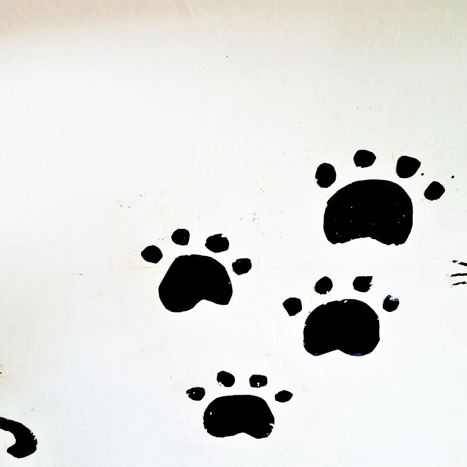 Wandtattoo Katze und Pfoten