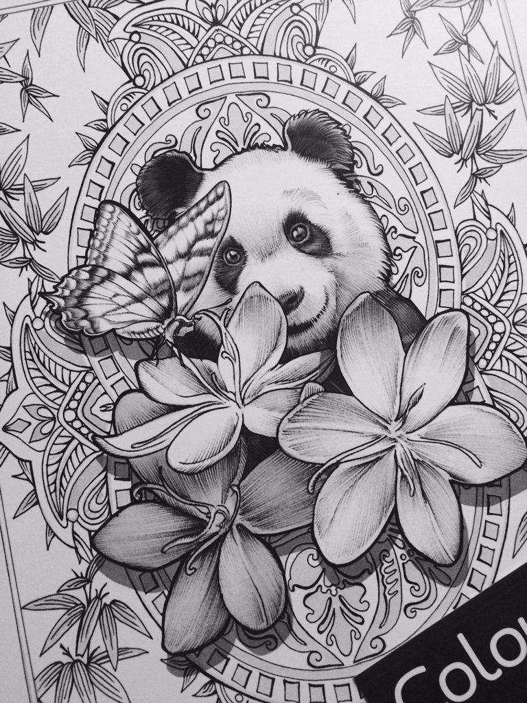 Bennett Klein Has Done It Again Cmsb Wild Is Full Of Beautifully Crafted Images Inspired By The Won Coloring Pictures Grayscale Coloring Summer Coloring Pages