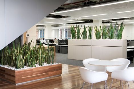 office planter boxes. Timber Planter Boxes With Pebbles Office