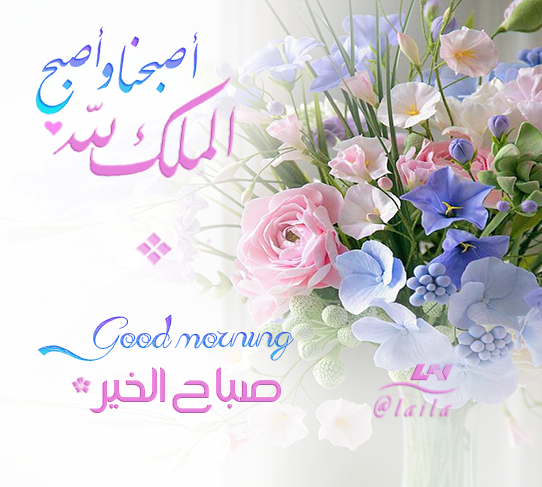 اصبحنا واصبح الملك لله صباح الخير Good Morning Images Flowers Good Morning Images Morning Images