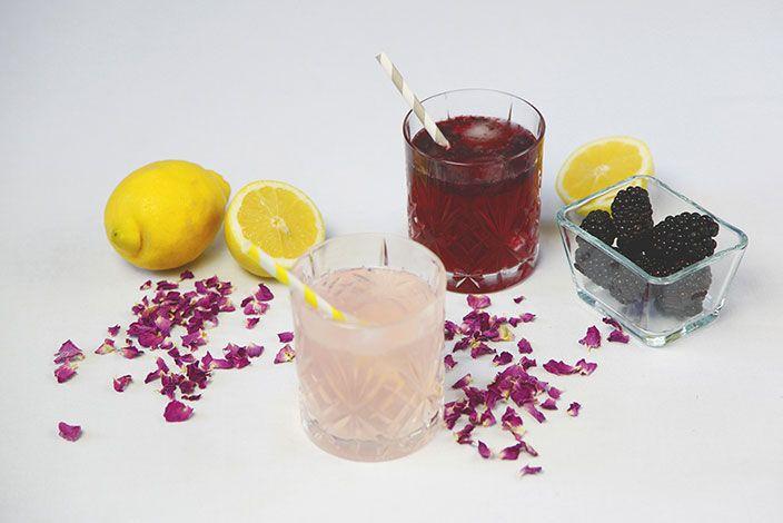 Rosenlimonade, Limonade selbermachen, Limonade, Rezept für Brombeeren, Limonade mit Brombeeren, Rosenblüten
