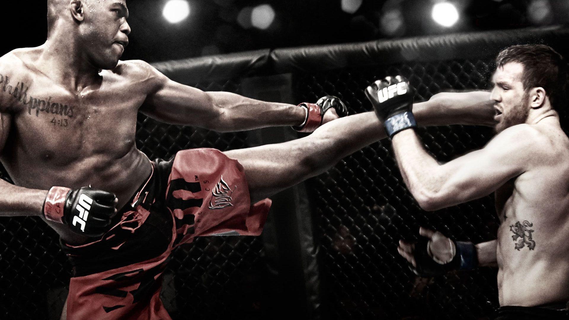 Anderson Silva Ultimate Fight Championship Ufc Ufc Jon Jones Mixed Martial Arts