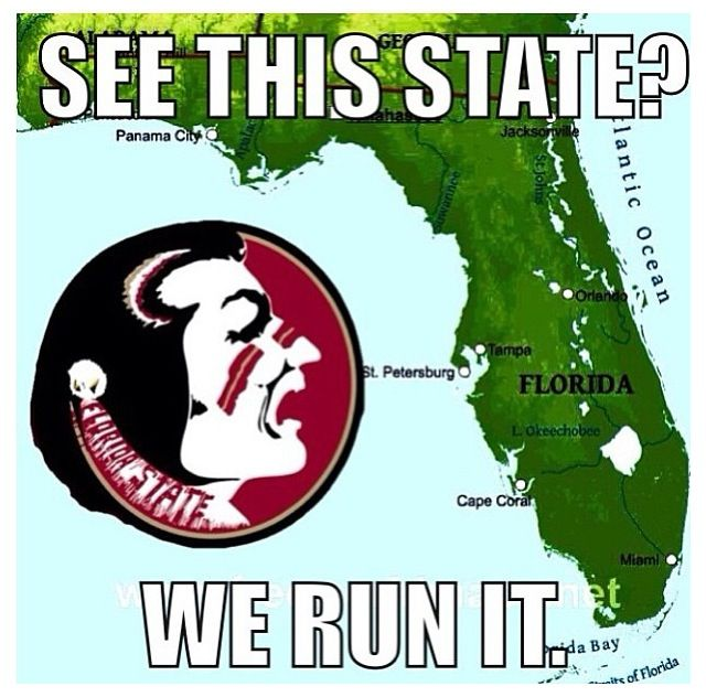 Go Noles With Images Florida State Seminoles Football