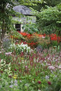 June Blake S Garden Irland In 2020 Irland Bauerngarten Garten