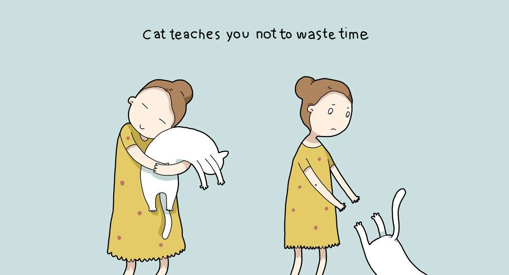10 Absolute Benefits Of Having A Cat » Design You Trust. Design, Culture & Society.
