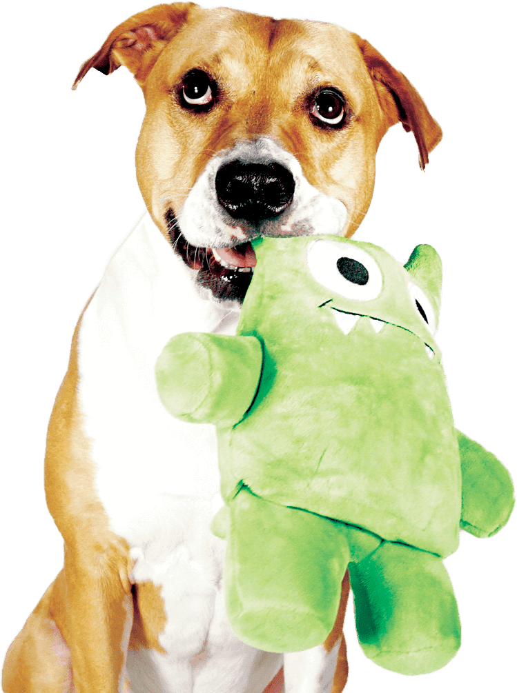 Tearribles are the first line of innovative dog toys that ...