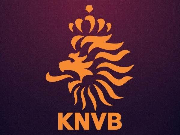 Netherlands Football Logo 2014