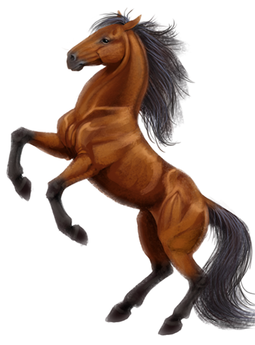 Horse Coat Color Genetics An Introduction Horse Illustration Horse Coloring Horse Drawings