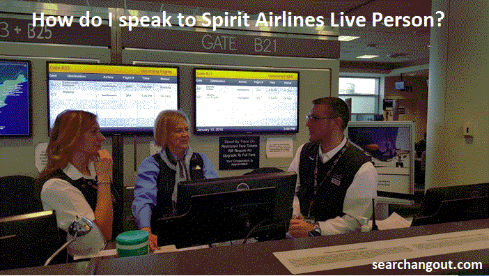 If you are not able to book your flight, then dial Spirit