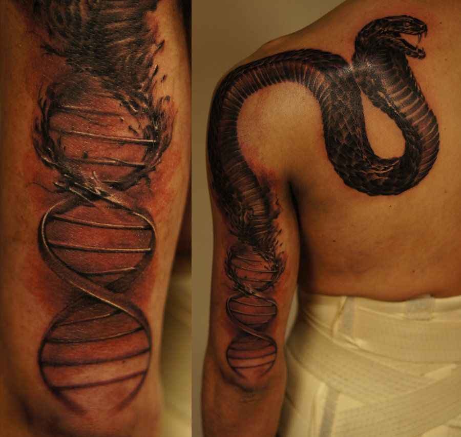 Dna Snake By Strangeris On Deviantart Dna Tattoo Snake Tattoo Tattoos