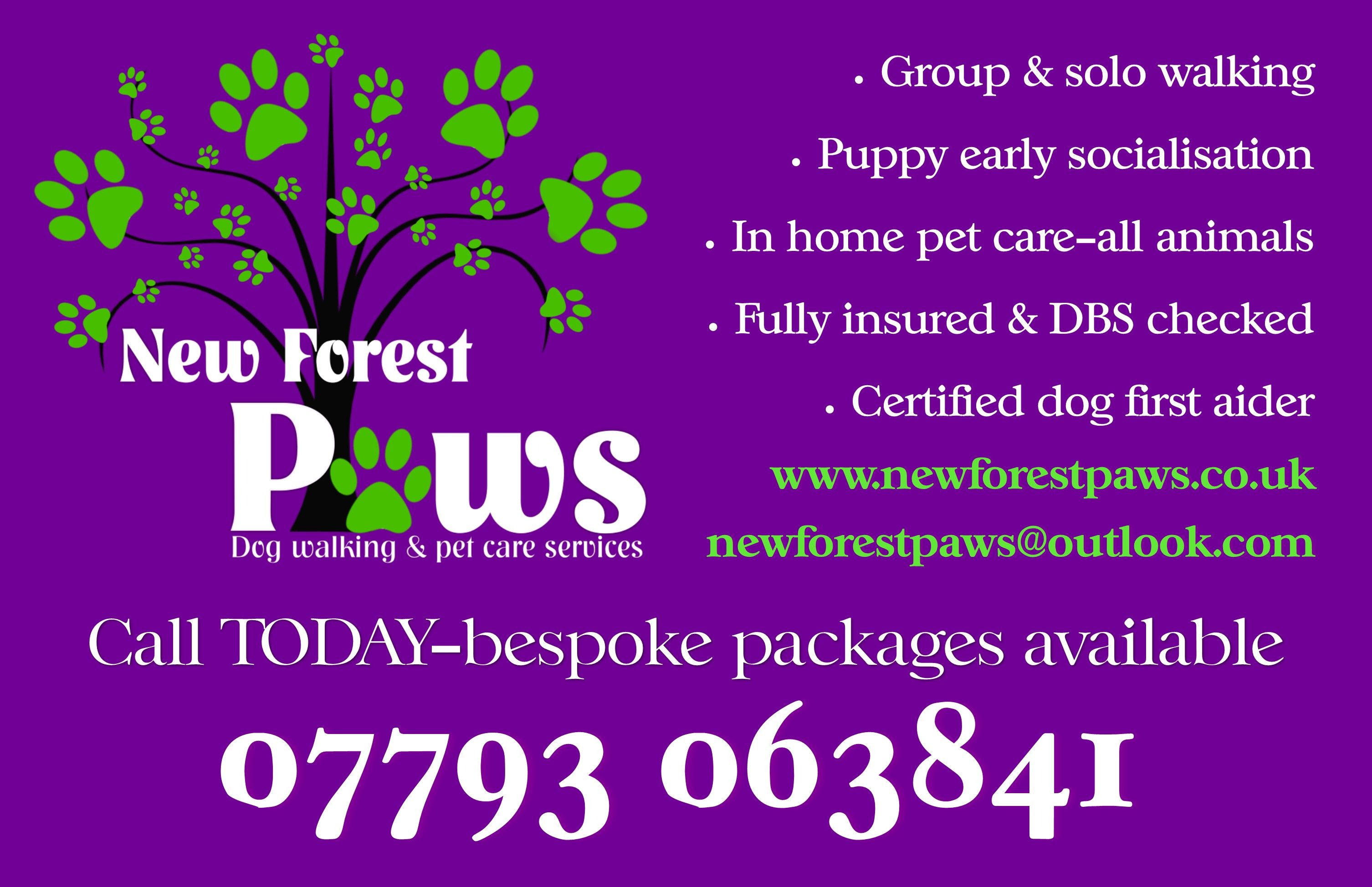 Pin By New Forest Paws On New Forest Paws Socialisation Dog