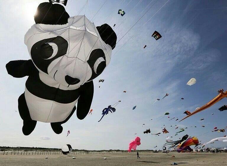 第9届 圣彼得-奥尔丁 Sankt Peter-Ording 风筝节 Drachenfestival,不同造型的风筝在海滩上空飞舞,德国 Germany。位于德国西北部的一座沿海城市,自2007年开始举办风筝节,今年共吸引来自全球各地的超过200名风筝爱好者参加。摄影师:Axel Heimken