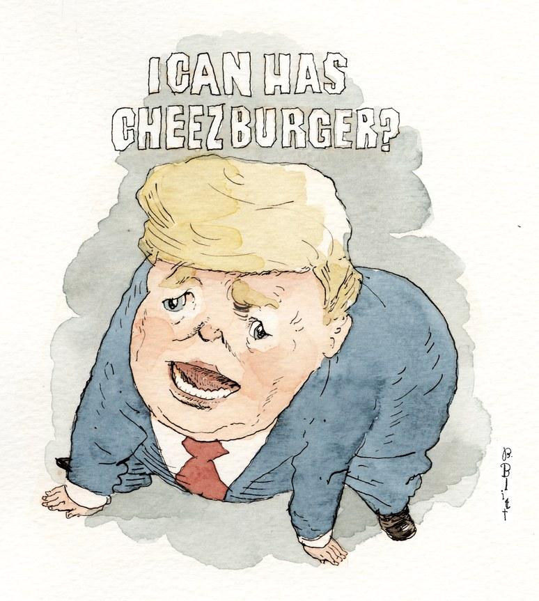 Trump CryingCat Memes Funny trump memes, New yorker