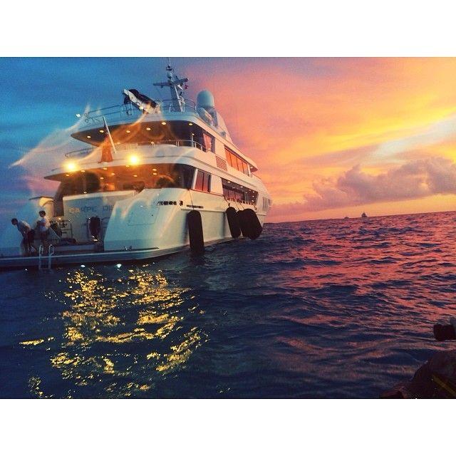 Sunset swim. by etisch