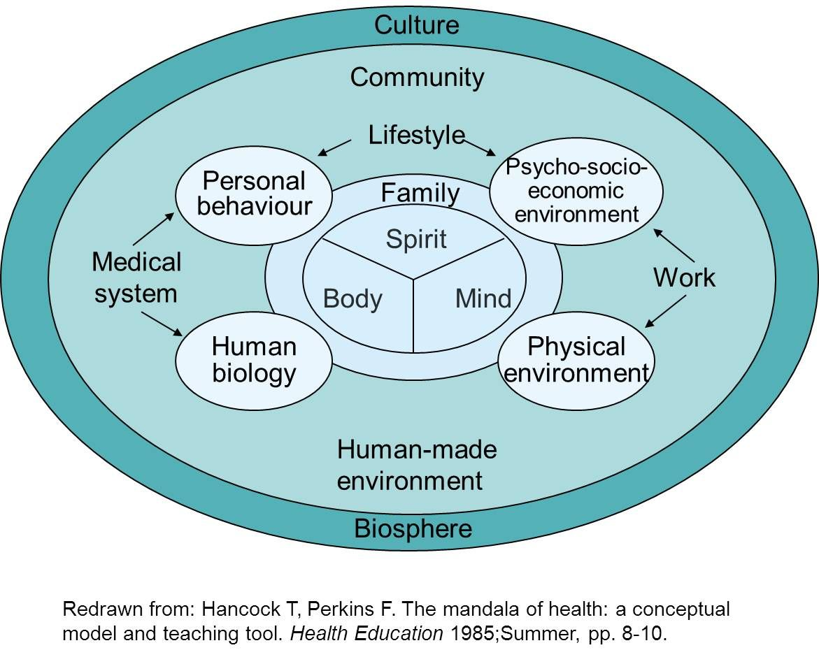 good social health examples Health education, Health