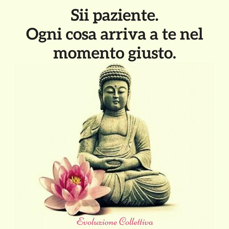 Risultati immagini per meditazione frasi buddha