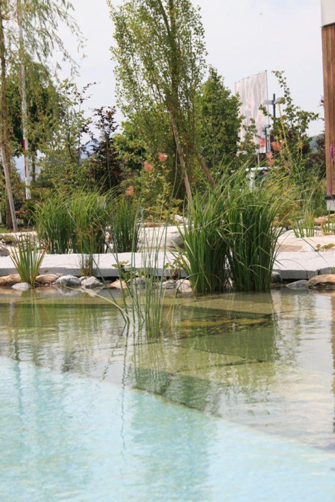 Lehnert AG - Schwimmteiche Garten Pinterest Schwimmteich - bilder gartenteiche mit bachlauf