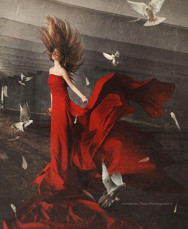 Book II - Amanda Diaz