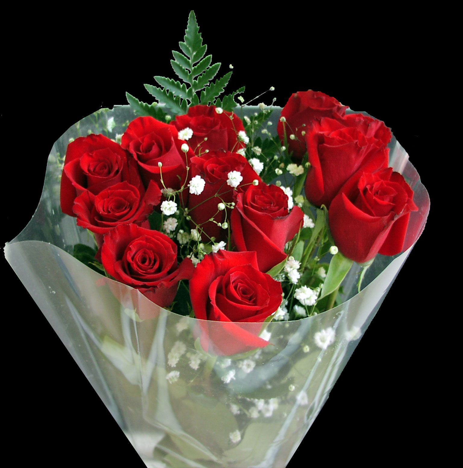 Red Roses Wallpapers Flowers Pinterest Red Roses And Flowers