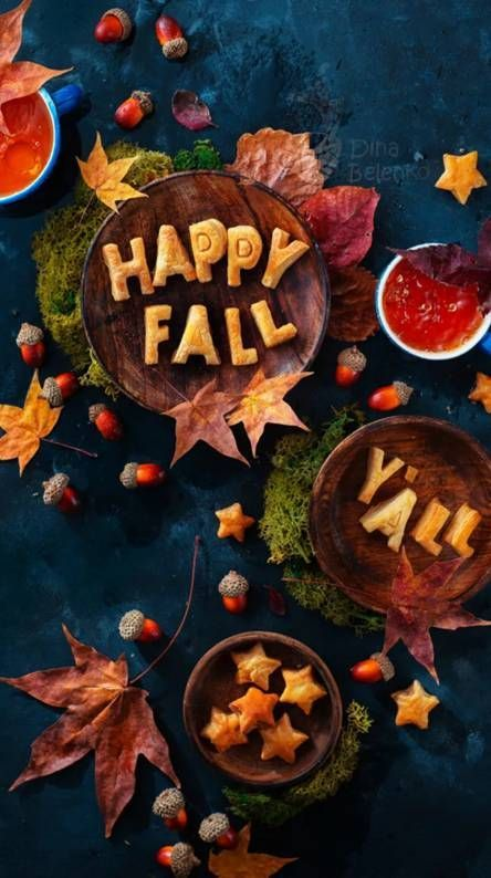Latest List of Awesome Fall Wallpaper for iPhone 11 Pro