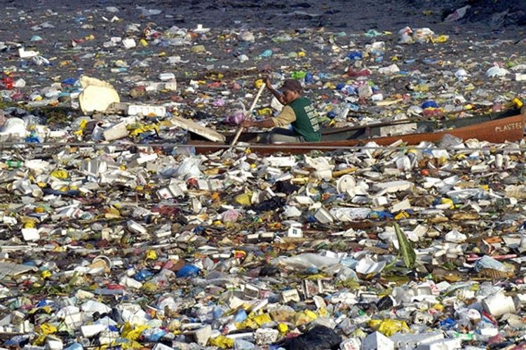 There Will Be More Plastic Than Fish In The Ocean By 2050 Great