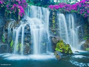 Most Beautiful Flowers With Waterfalls Yahoo Image Search Results Waterfall Wallpaper Waterfall Pictures Waterfall