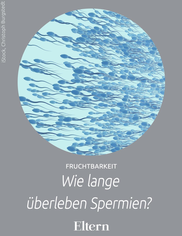 Wie Lange überleben Spermien An Der Luft