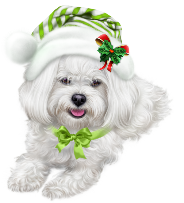 TUBE NOEL CHIEN Puppy Images 6104d6222