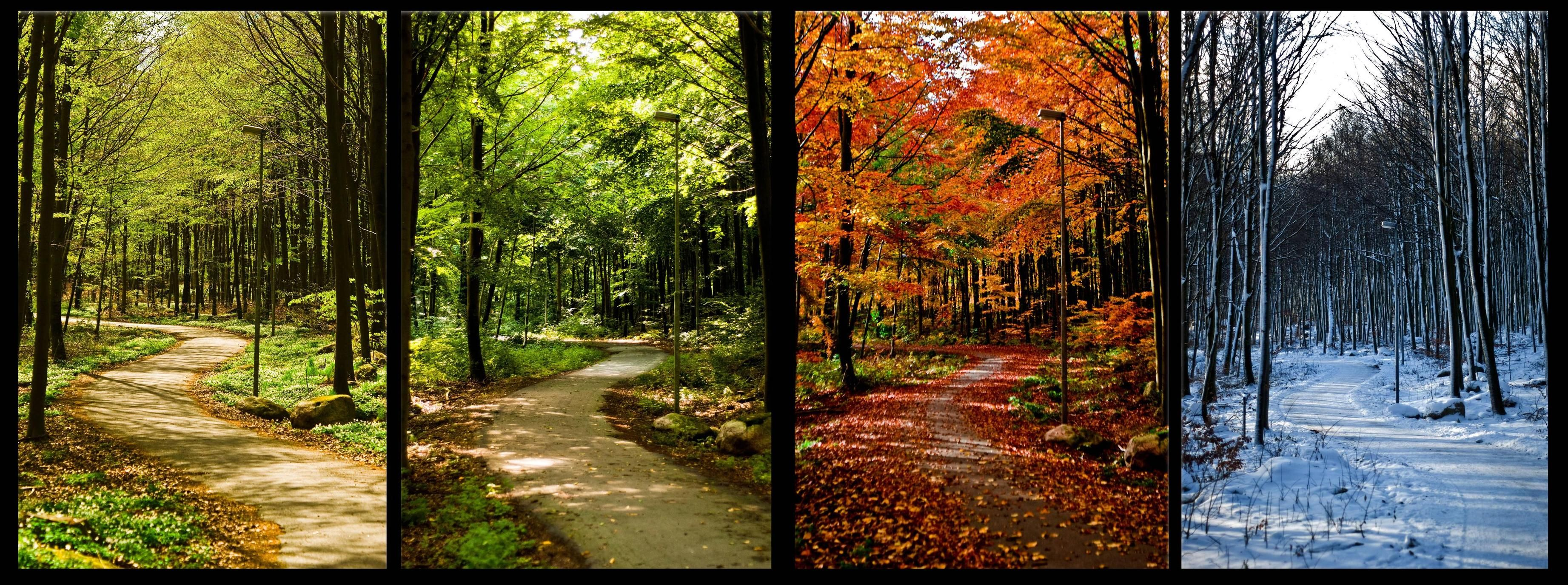 Same Place Four Seasons