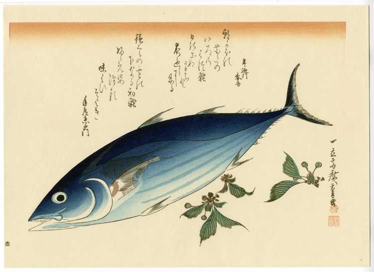Fuji Arts Japanese Prints - Grand Series of Fishes