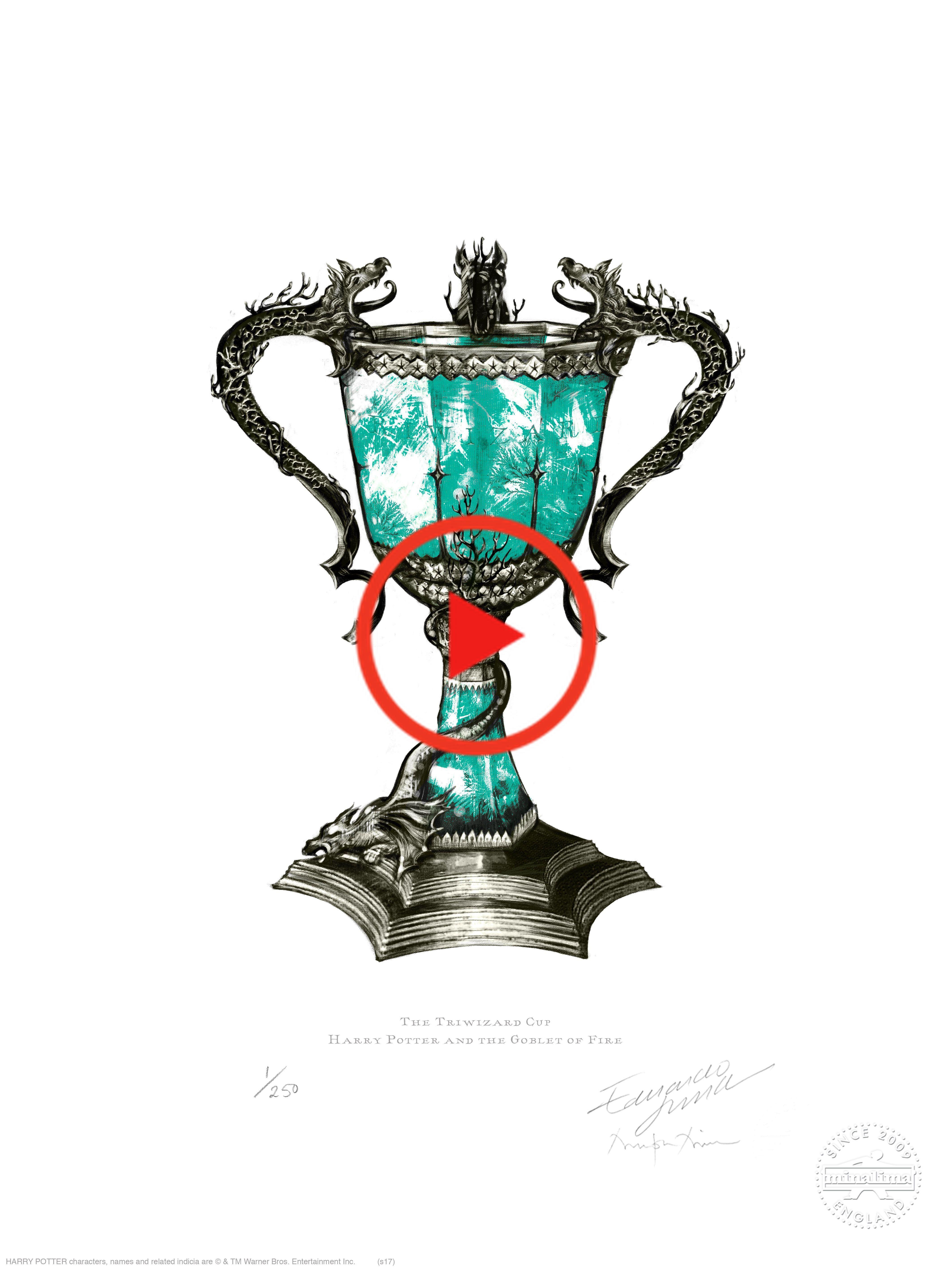 Die Trimagischen Cup Featured In Harry Potter Und Der Feuerkelch Harry Potter Bellatrix Lestrange Harry Potter Illustrations Slytherin Harry Potter