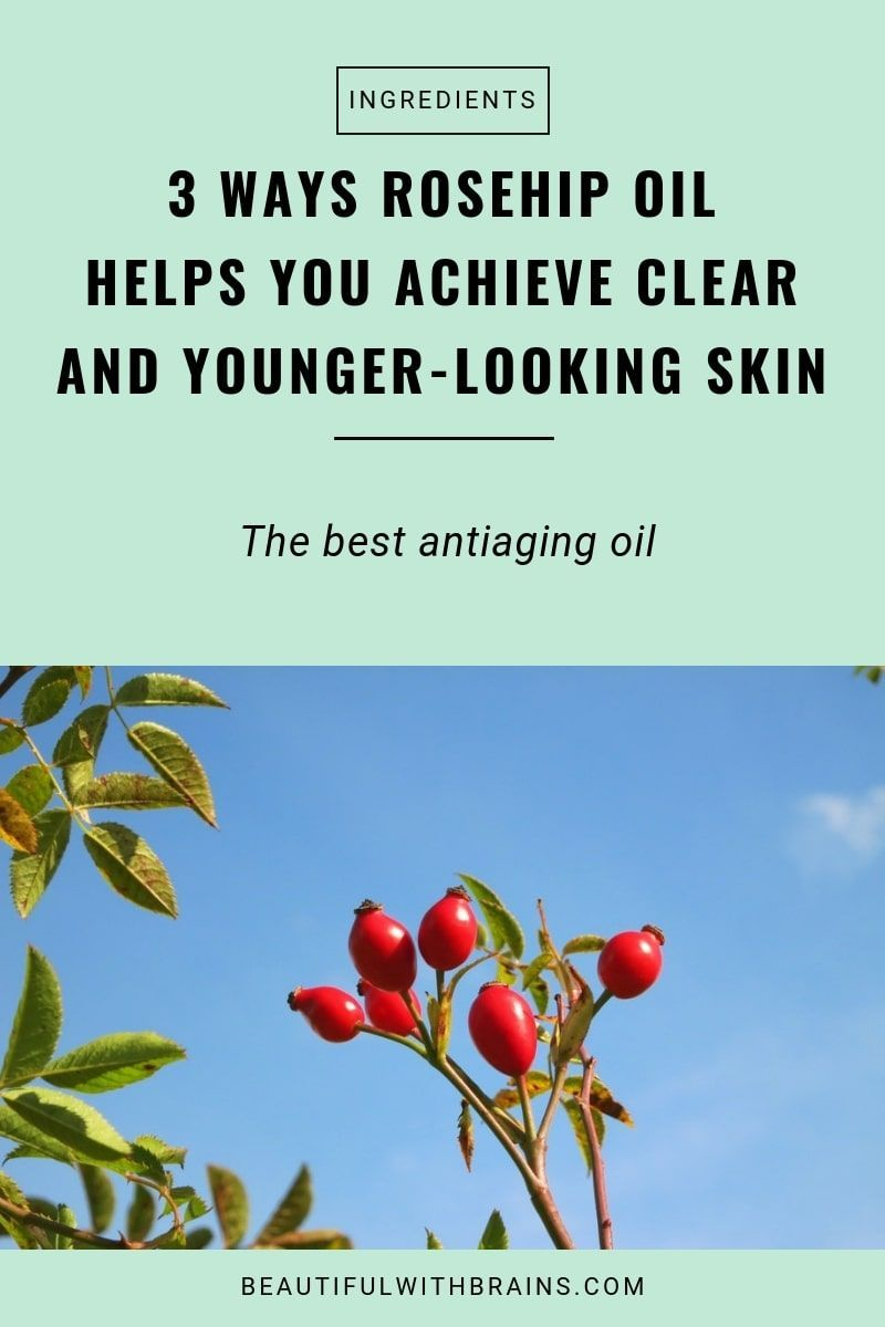 Rosehip Oil The Antiaging Oil You Should Add To Your Skincare Routine Anti Aging Skin Products Skin Care Solutions Anti Aging Oils