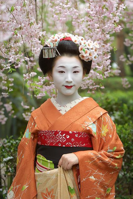 Maiko Mameyo under cherry blossoms in April 2002