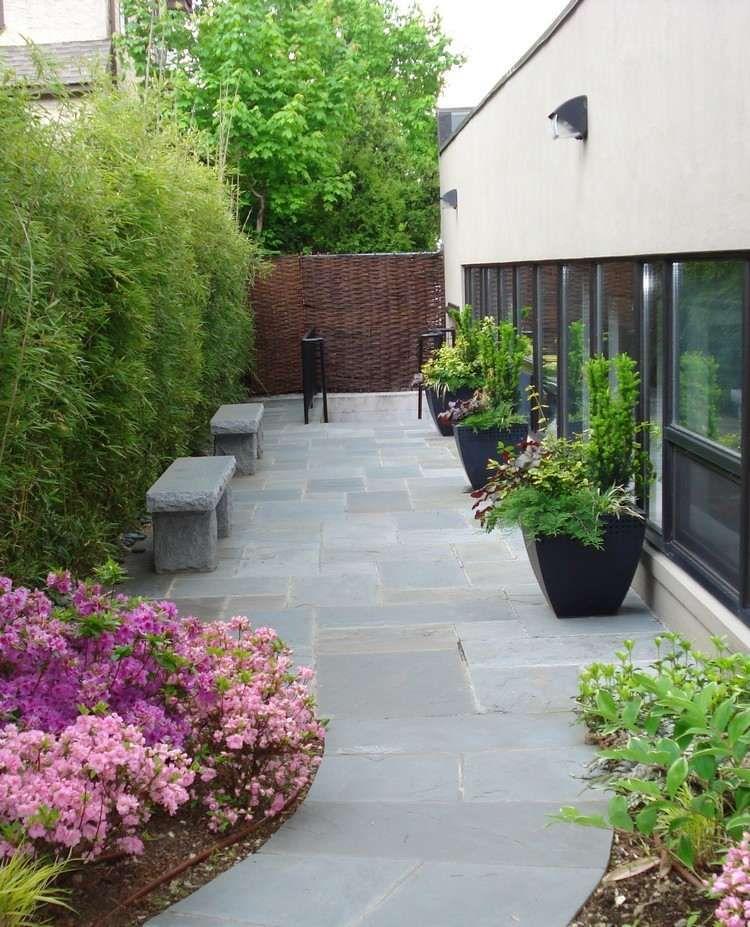 Bambuspflanzen als Sichtschutz und Steinbänke   Terrasse und Garten ...