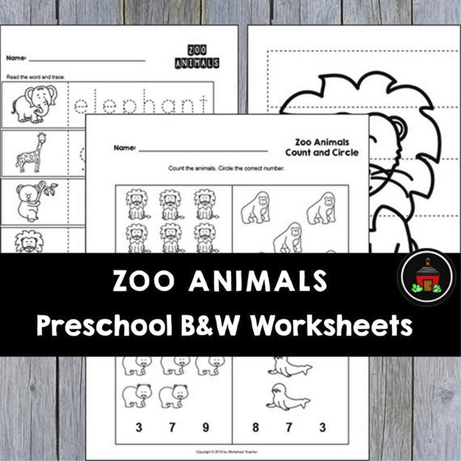 25 Zoo Animals Preschool Curriculum Activities