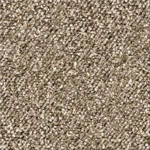 Bon Oceanside Fudgeripple Indoor Outdoor Carpet