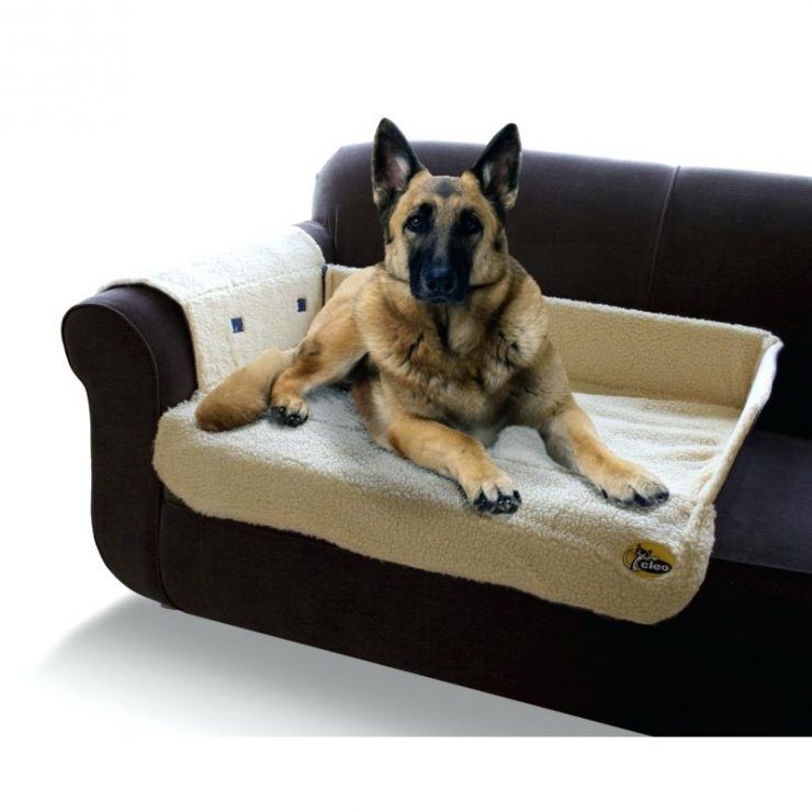 Bedroom Dog Couch Bed With Balmoral Crushed Velvet Luxury Dog Sofa B Medium Image For Cheap Dog Sofa Beds Uk Dog Bed F Dog Couch Luxury Dog Sofa Diy Dog Bed