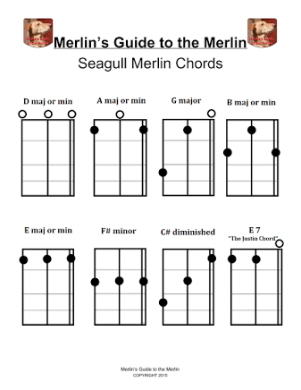 Seagull Merlin Chords Google Search Guitarsstringed Instruments