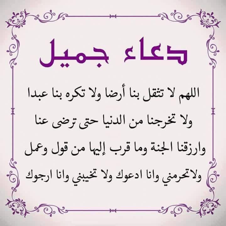 Desertrose اللهم إني استودعك ديني وأمانتي وذريتي وزوجي وقلبي وقلب ذريتي وقلب زوجي وسمعهم وأب Islamic Inspirational Quotes Little Prayer Islamic Quotes Quran