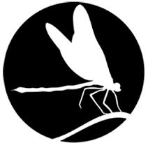 Resultado de imagem para logos com libelula