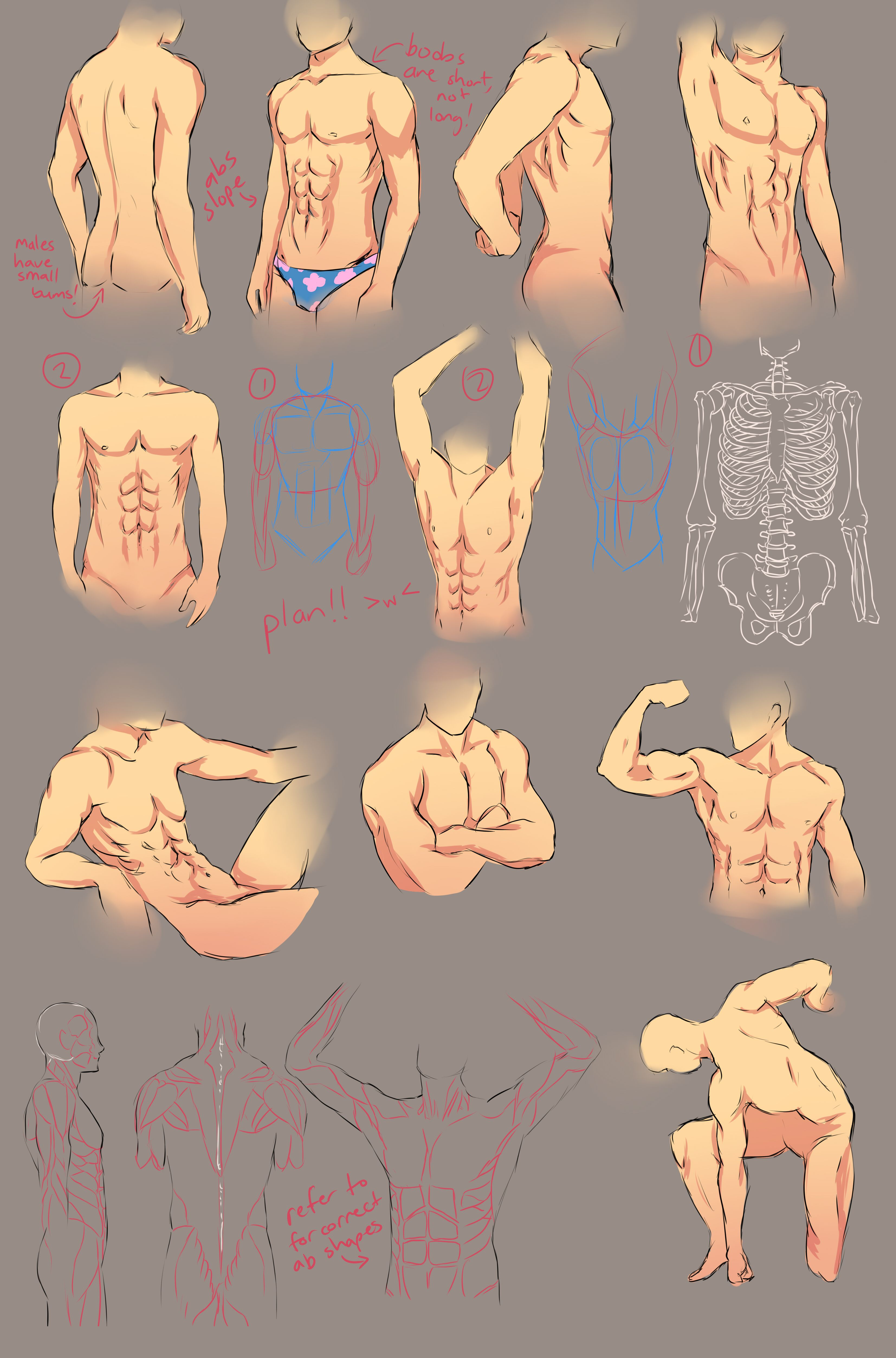 Male body Drawing | Drawings | Pinterest | Body drawing, Drawing ...