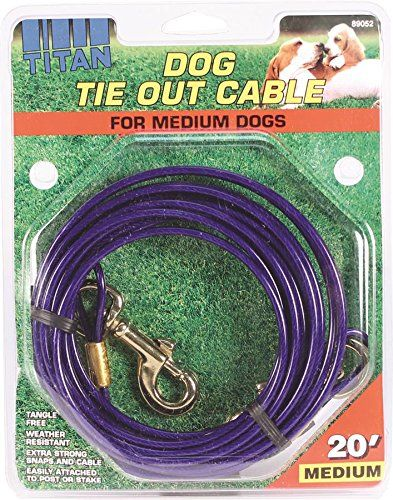 Coastal Pet Products DCP89052 Titan Dog Medium Tie Out Cable, 20-Feet >> Details can be found  : Dog Training and Behavior Aids