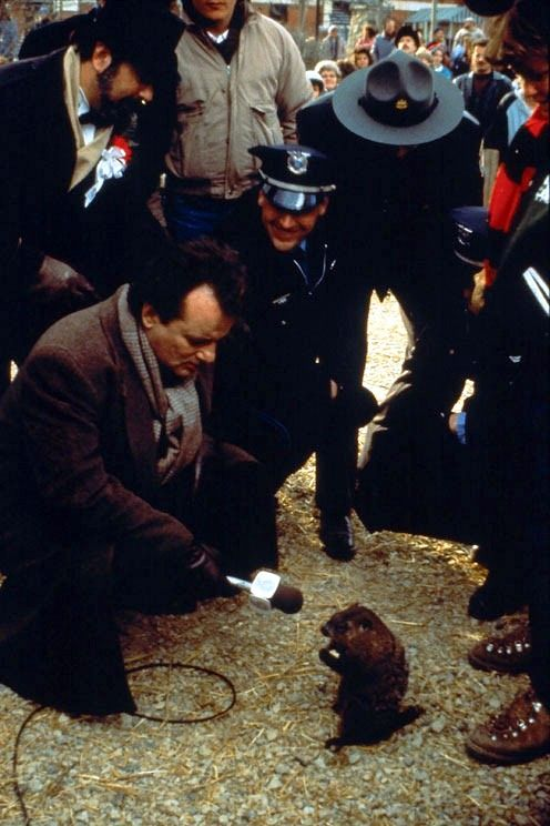 """Groundhog Day"", because during filming the Groundhog bit and peed on Bill Murray multiple times, one of the few co-stars to ever have trumped his shennanigans"