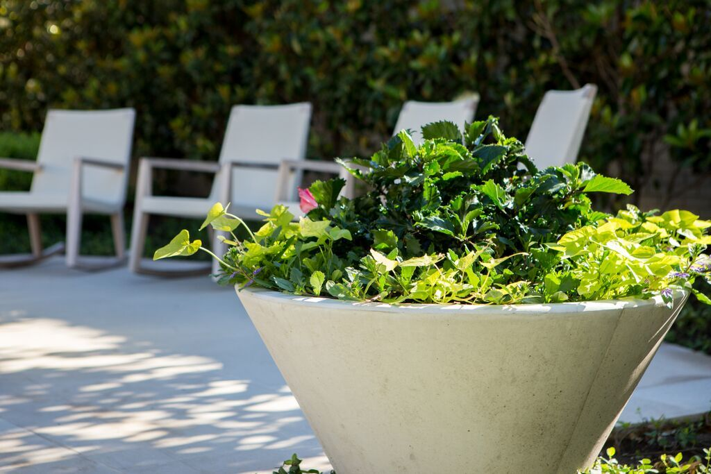 Jacksons Home U0026 Garden Online Store Offers Unique Home Decor And Outdoor  Furniture To Enhance The Experience Of Your Home, Garden And Patio.