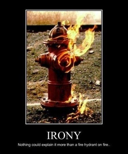 Irony - MEME, LOL and Funny Pictures. Get the BEST and Funniest MEME, Funny  Pictures and LOL from the Funny Pictures Blog. | Irony, Humor, Bones funny